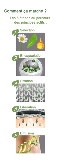 Schéma microencapsulation